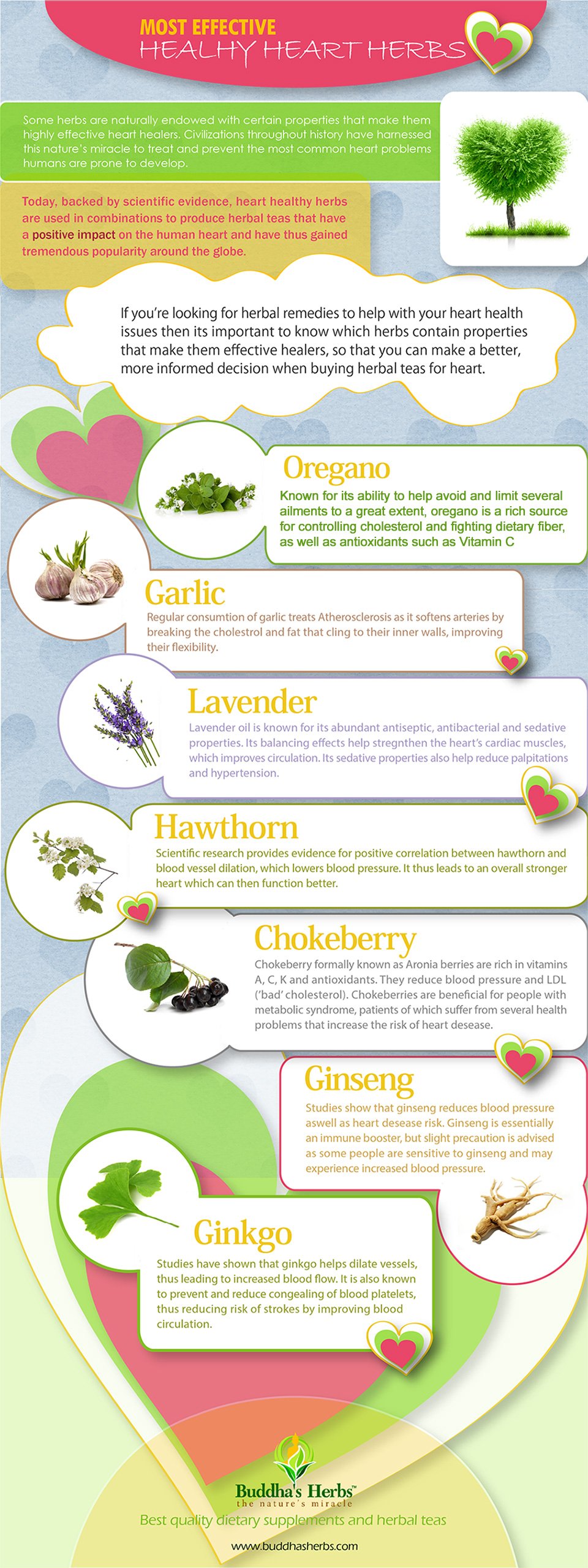 Herbs-heart-health-infographic