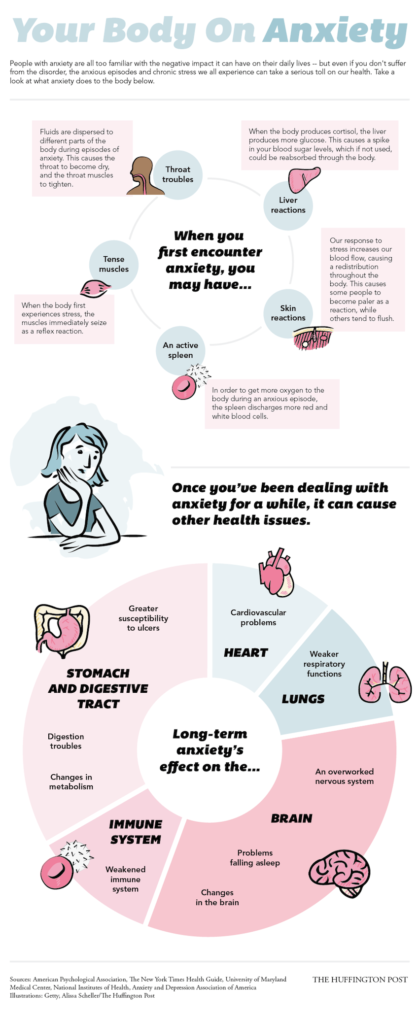 your-body-on-anxiety