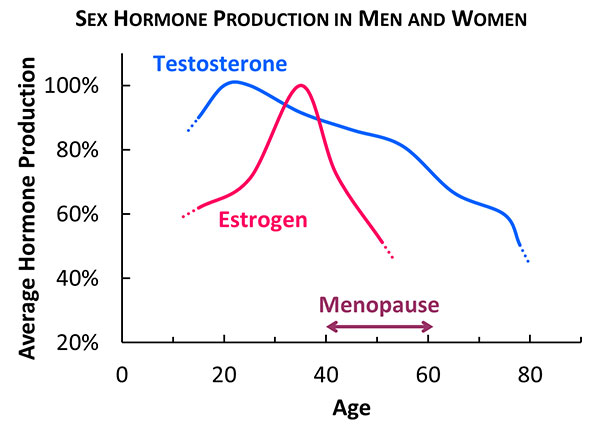 sex-harmone-production-in-men-and-women