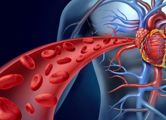 natural-ways-to-improve-blood-circulation_feature