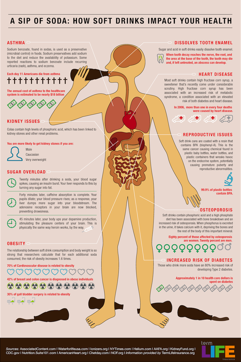 Drinking Soda Destroys Your Body
