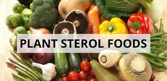 Plant Sterol Foods