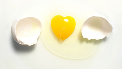 are-eggs-high-in-cholesterol