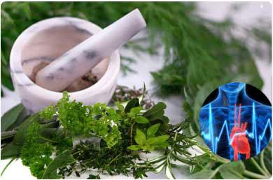 herbs-lower-cholesterol