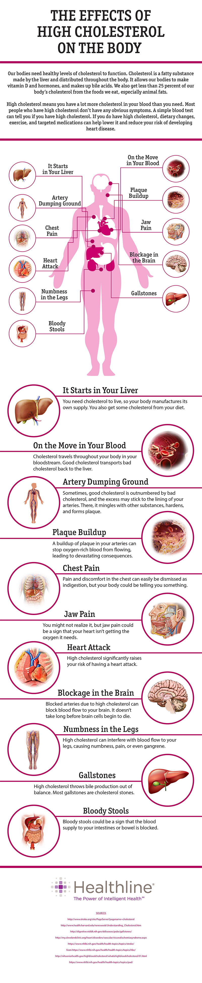 effects-of-high-cholesterol