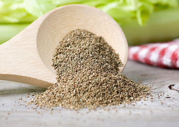 Celery-Seed-Extract