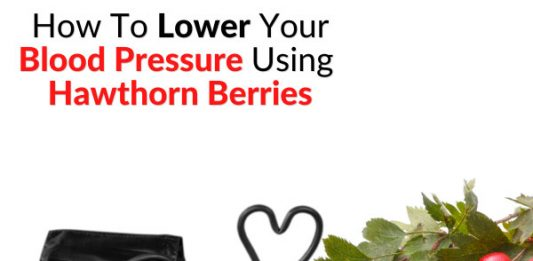 How To Lower Your Blood Pressure Using Hawthorn Berries