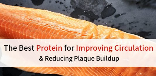 The Best Protein For Improving Circulation and Reducing Plague Buildup