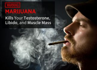 WARNING: Pot, Marijuana and THC Kills Your Testosterone, Libido, and Muscle Mass