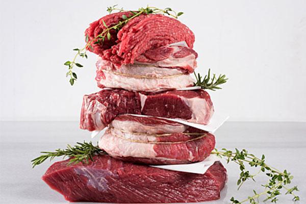 Carnivore-Diet