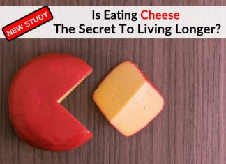 New Study - Is Eating Cheese The Secret To Living Longer?