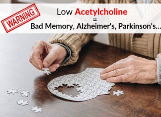WARNING: Low Acetylcholine = Bad Memory, Alzheimer's, Parkinson's