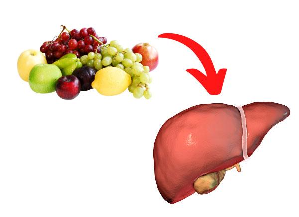 fruits liver