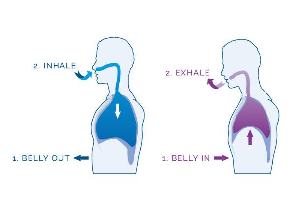 belly breathing
