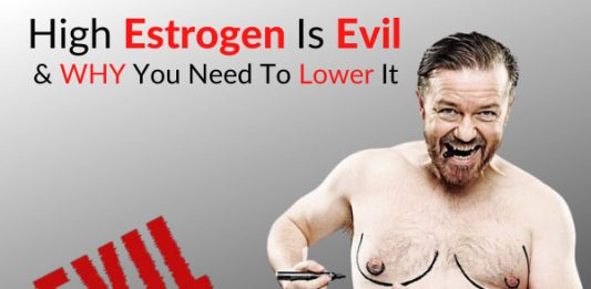 High Estrogen Is Evil - WHY You Need To Lower It (Part 1)