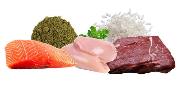 healthy proteins