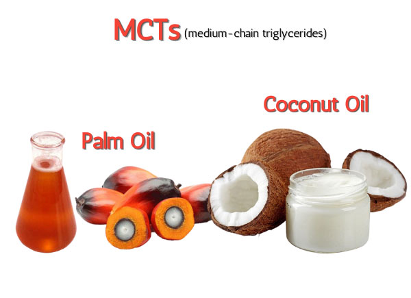 MCT in palm and coconut oil