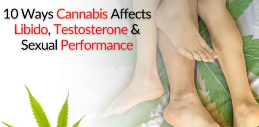 10 Ways Cannabis Affects Libido, Testosterone & Sexual Performance