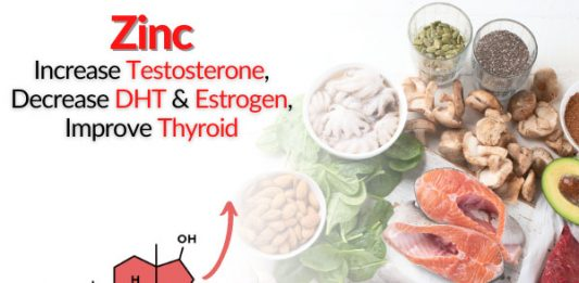 Zinc - Increase Testosterone, Decrease DHT & Estrogen, Improve Thyroid