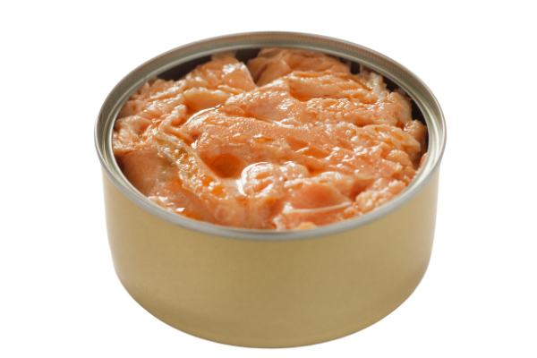 salmon in can
