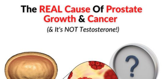The REAL Cause Of Prostate Growth & Cancer