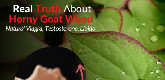 Real Truth About Horny Goat Weed - Natural Viagra, Testosterone, Libido