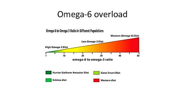 omega 6 overload