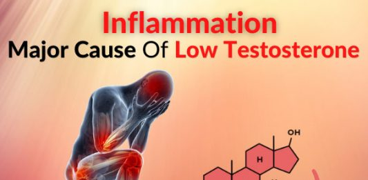 Inflammation - Major Cause Of Low Testosterone [Clinical Study]