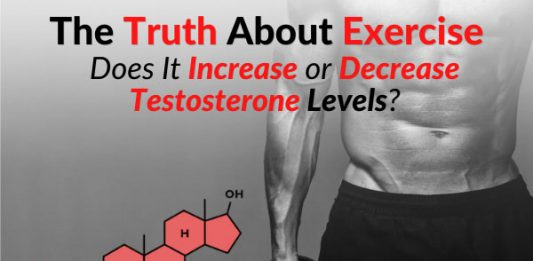 The Truth About Exercise: Does It Increase or Decrease Testosterone Levels?