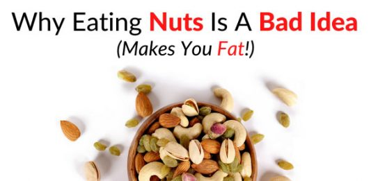 Why Eating Nuts Is A Bad Idea (Makes You Fat!)